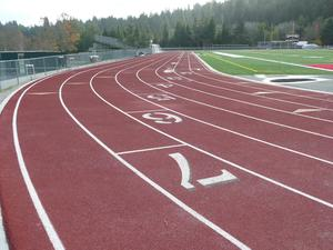 Picture of all-weather track