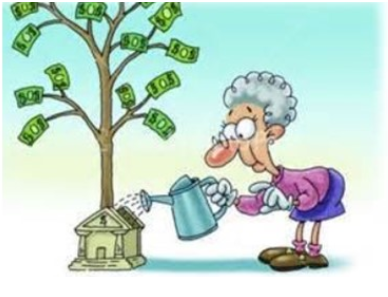 Scholarship Granny