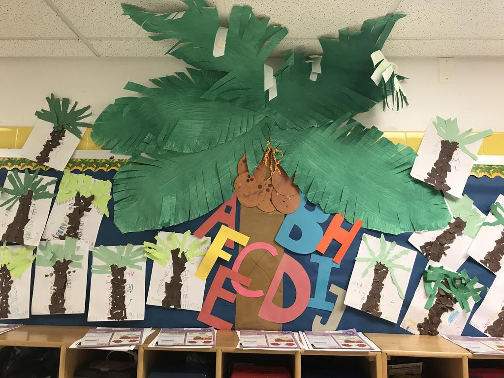 bulletin board display: pre-k palm tree, students made their own palm tree