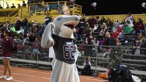Sharky at football senior night.jpg