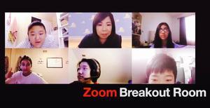 Zoom breakout room.jpg