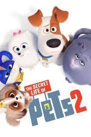 Movie Night This Friday! Thumbnail Image