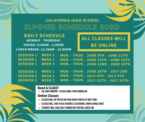 summer school 2020 information