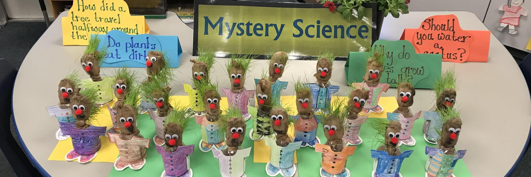 Second grade Mystery Science Project