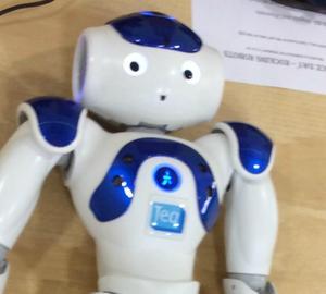 Pic of Teq NAO Robot