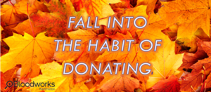 Fall into Donating.png