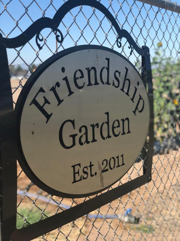 1st Grade Harvests their Friendship Garden Thumbnail Image