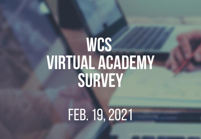 Virtual Academy Survey