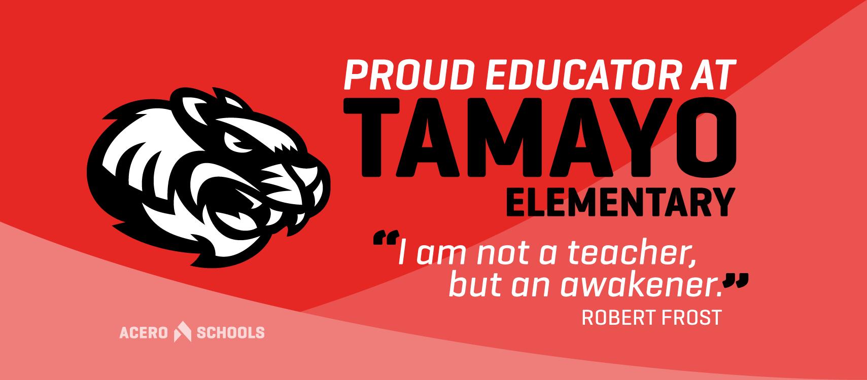 Tamayo_Teacher_Cover