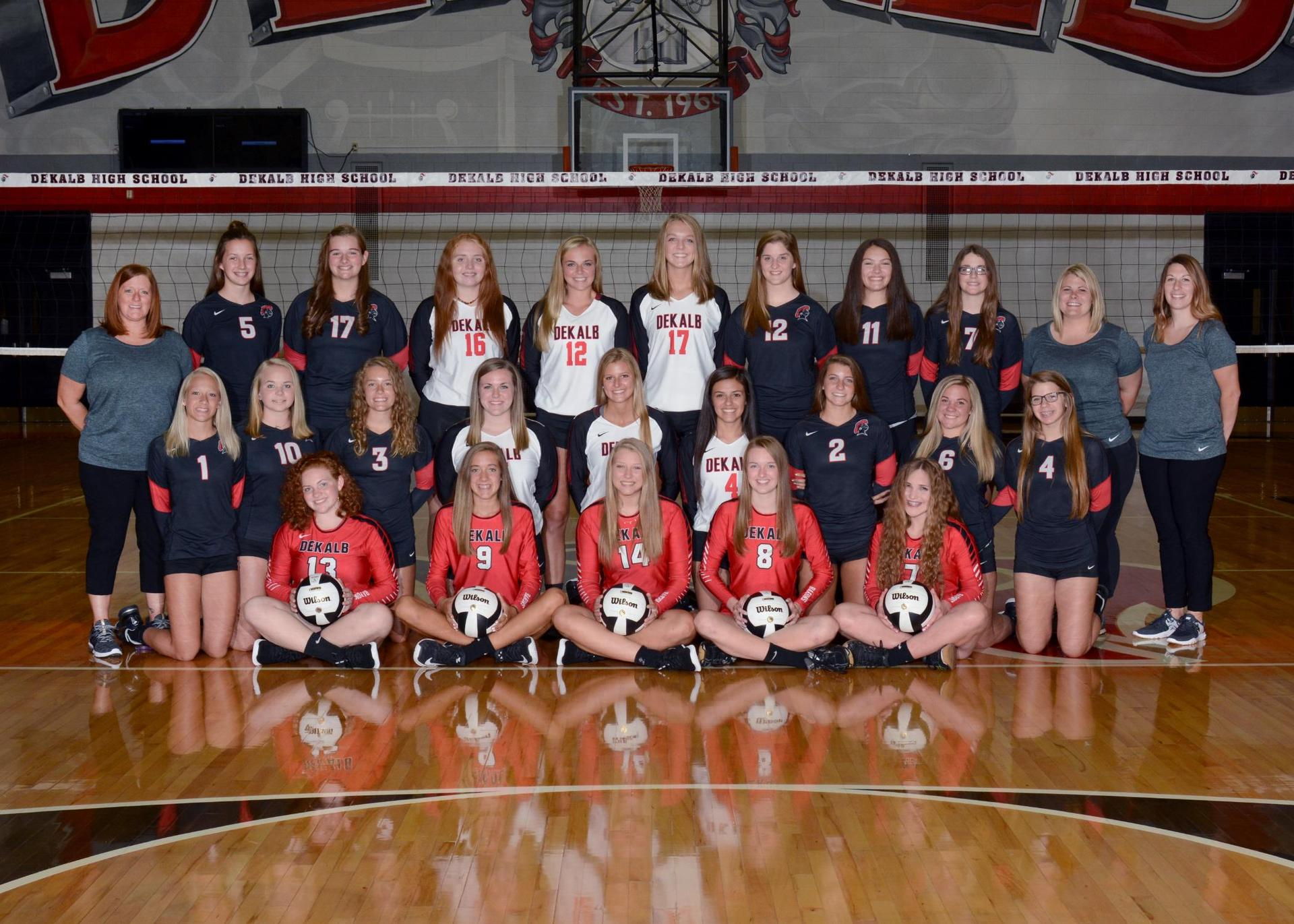 2018-2019 Lady Baron Volleyball