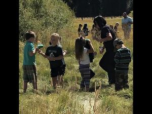Students hunting for insects in the meadow.