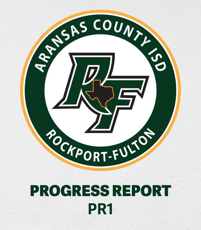Progress Report PR1