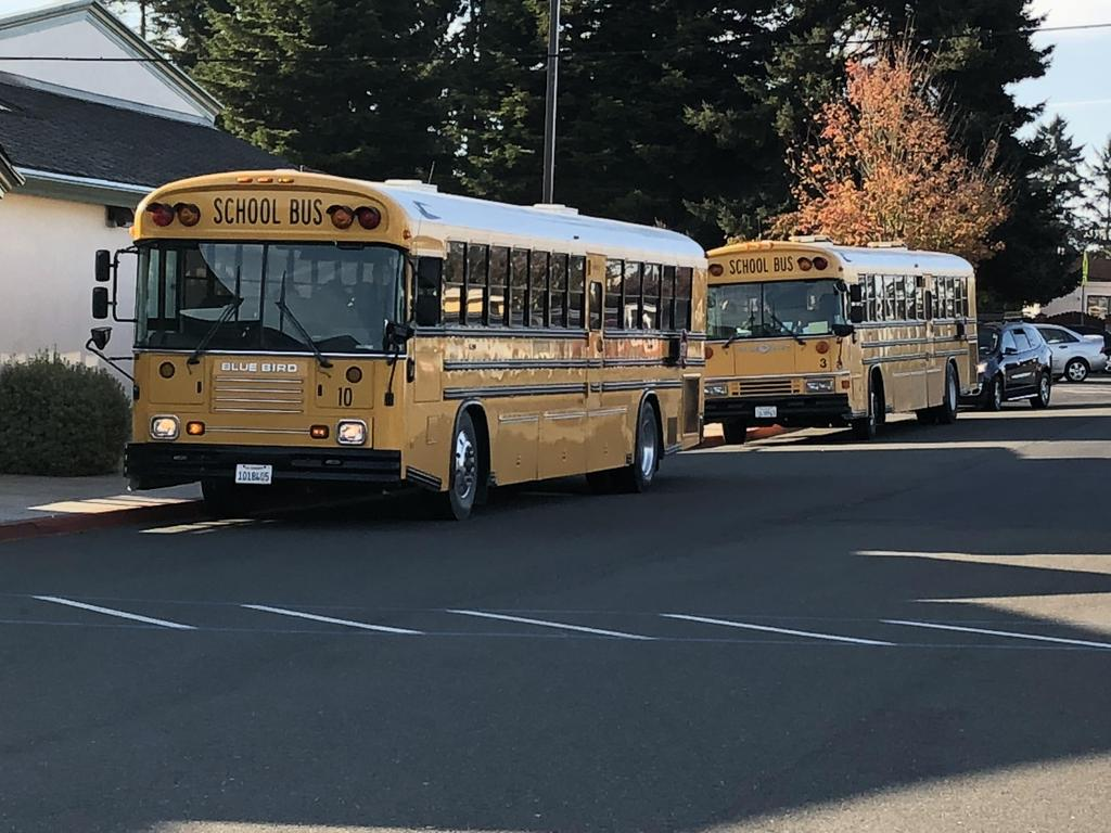 Buses on the way to the pumpkin patch