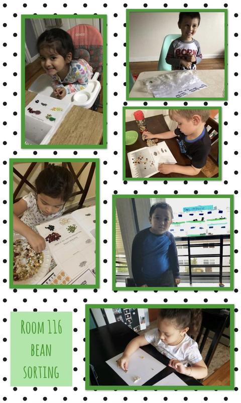 Bean Sorting Collage