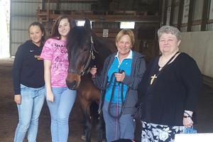A photo of student and adult volunteers with a horse