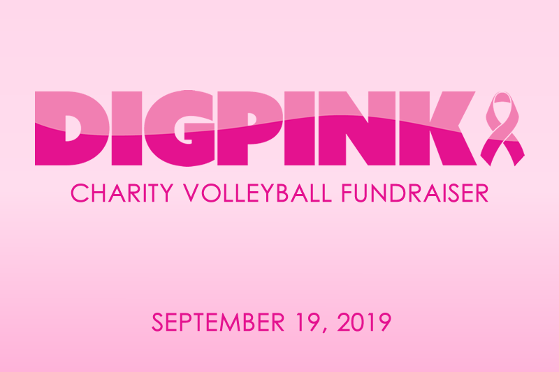 Image DigPink Volleyball Charity