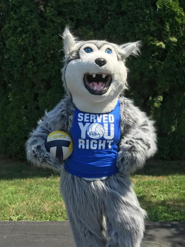 Mascot with volleyball