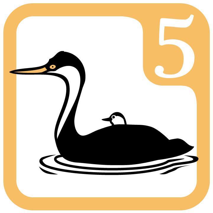 5 Grebe Icon