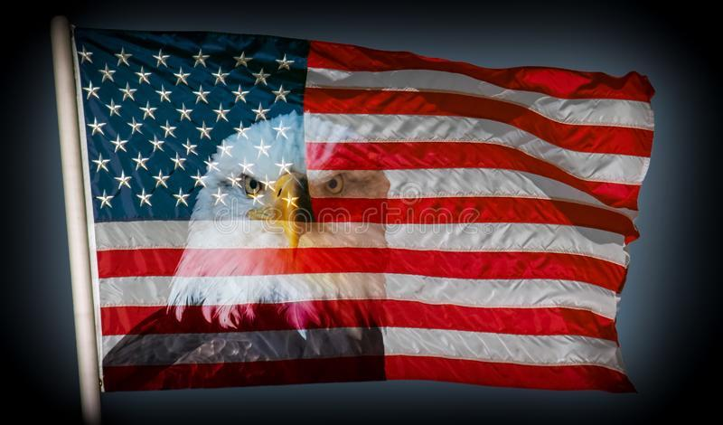 The beautiful American flag with a majestic bald eagle