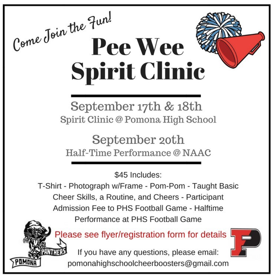 Cheer & Dance Pee Wee Spirit Clinic Thumbnail Image