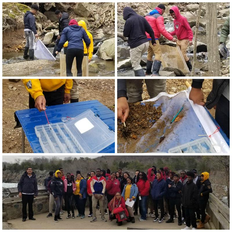Scholars Investigate Water Health on Field Study Trip to Great Falls Thumbnail Image