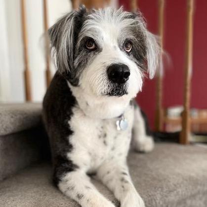 B. Wexler's Profile Photo