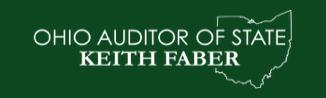 Auditor logo