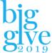 Big Give SA-2019