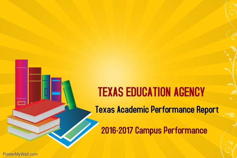 TEA Academic Performance Report