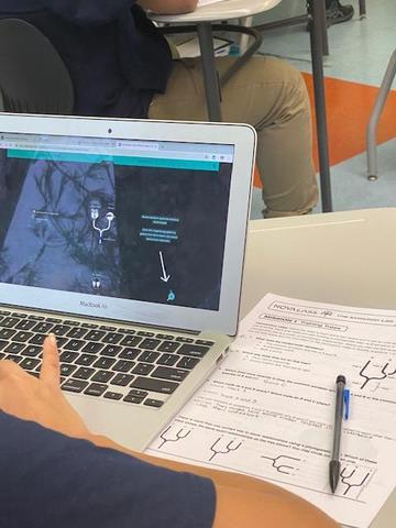 Nova database helping student solve problem
