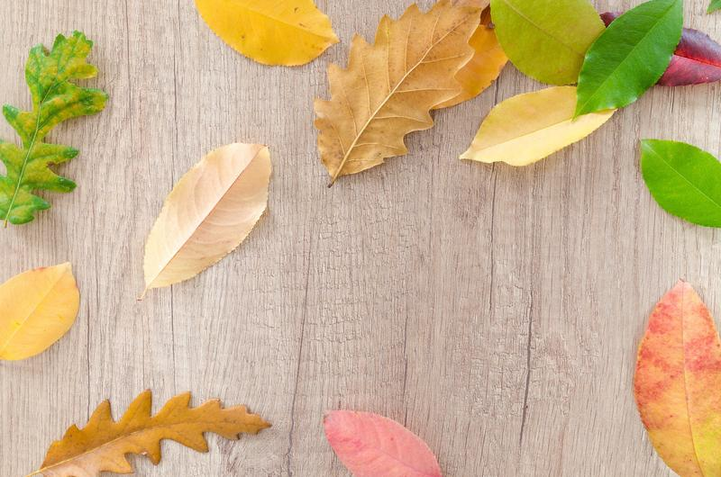 Leaves on a Wooden Table