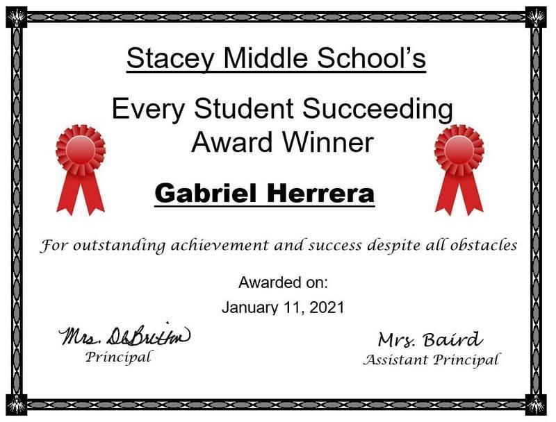 Every Student Succeeding Award winner