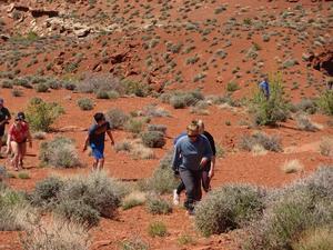 students walking through desert