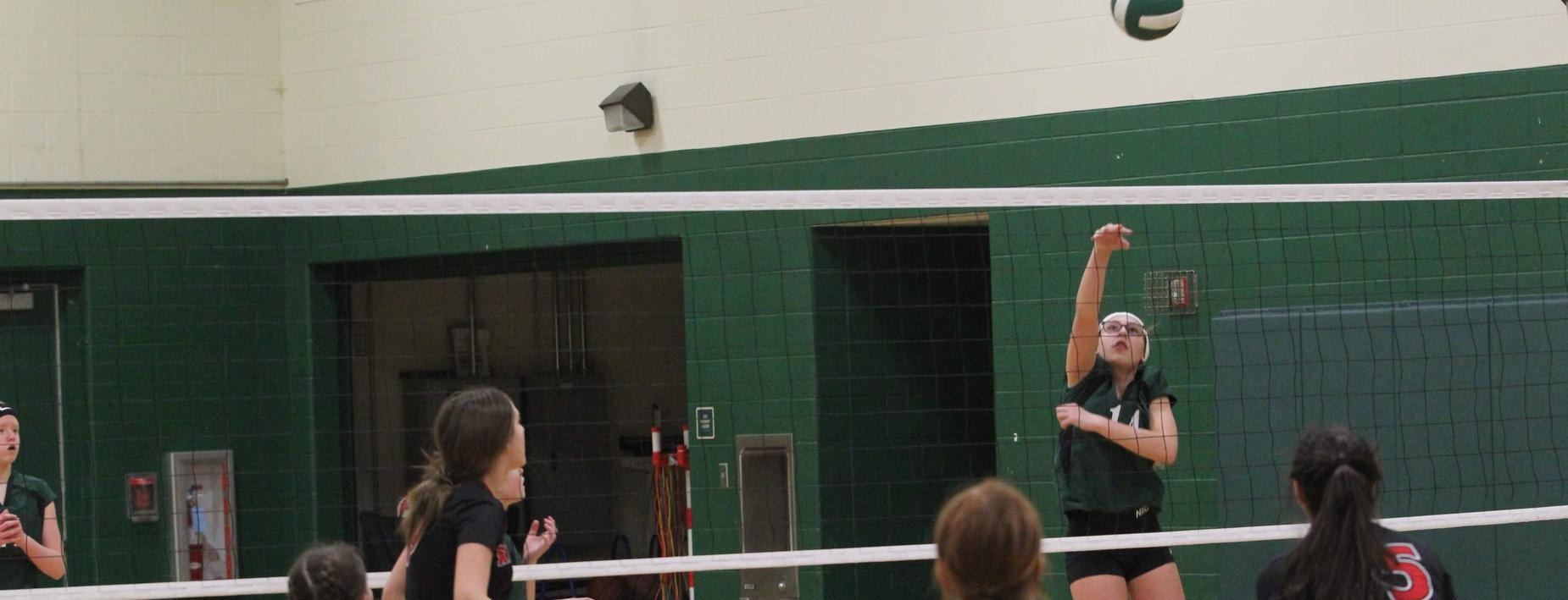 Volleyball at CCMS