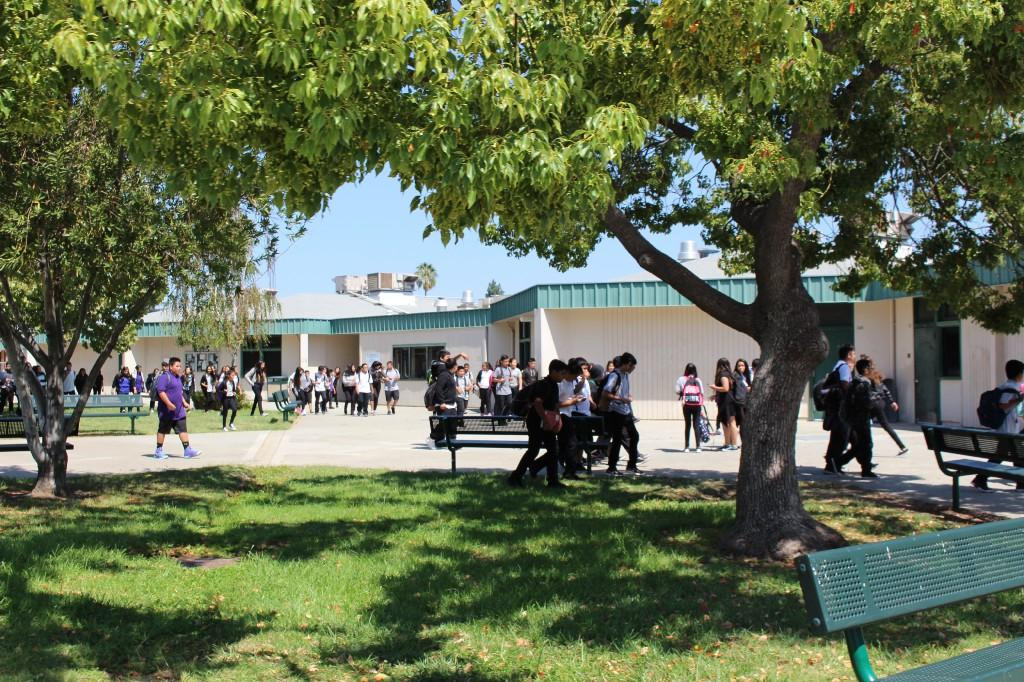 students walk on campus near trees, grass, benches, and buildings
