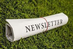 newsletter-newspaper-green-meadow-41220015.jpg