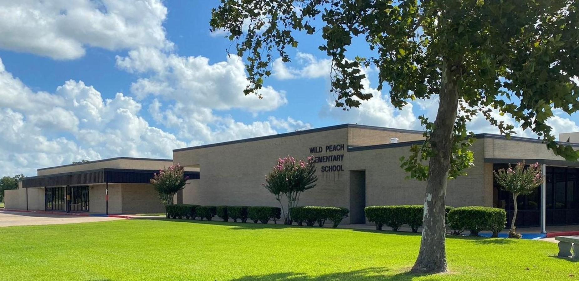 Wild Peach Elementary