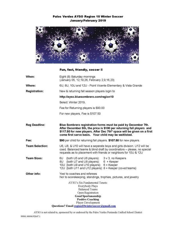 Winter Soccer Flyer
