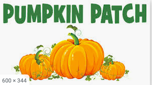 Pumpkin Patch Thumbnail Image
