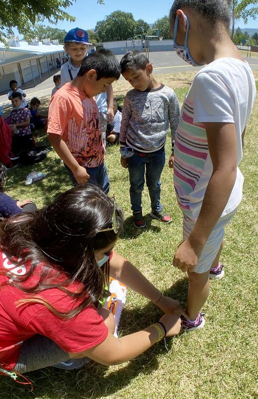 City of Ukiah Summer Safari Counselor Tomatillo working with Ukiah Unified students