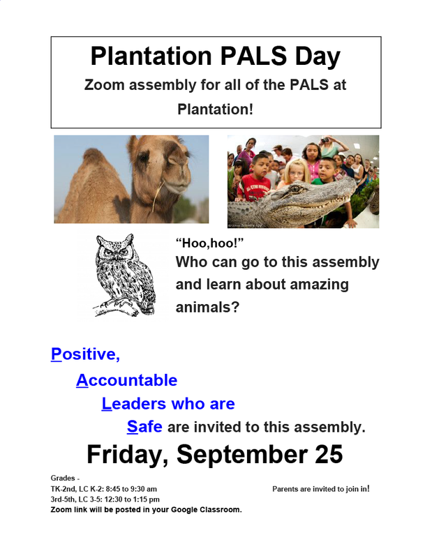 Zoom PALS Poster
