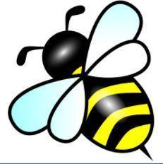 Honeybee Tryouts