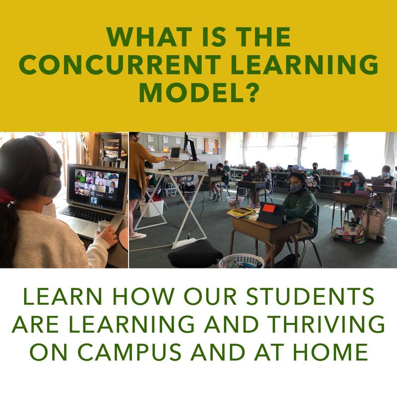Understanding The Concurrent Learning Model Featured Photo