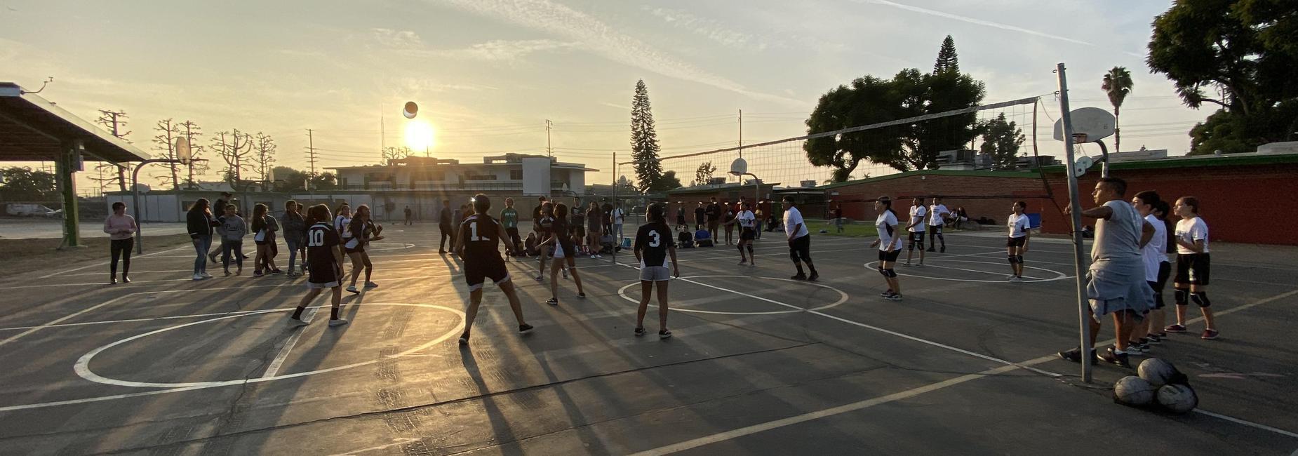 NPAA Volleyball