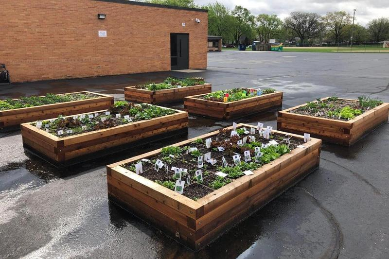 Look at the Southwest School Garden Grow! Thumbnail Image