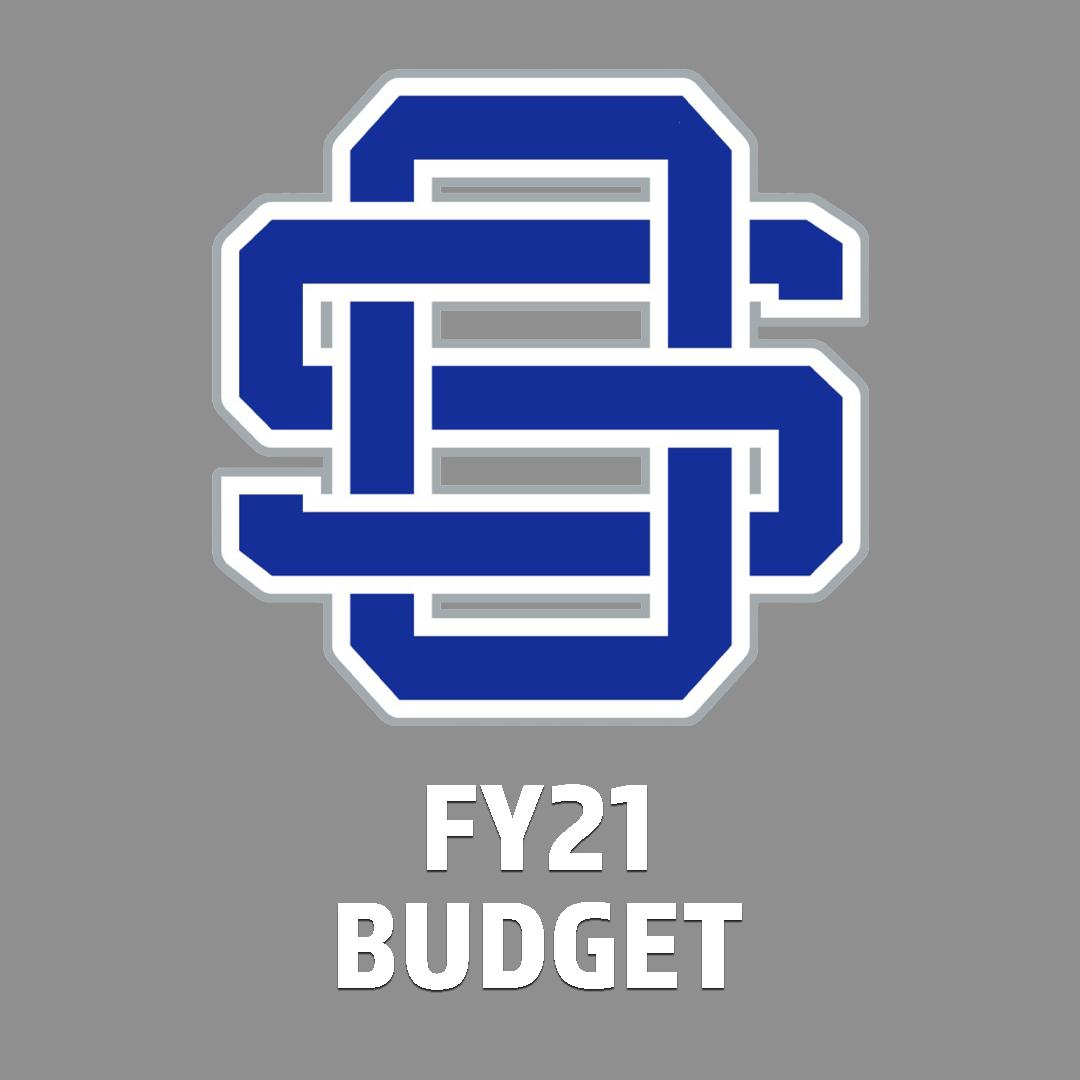 FY21 Budget Icon