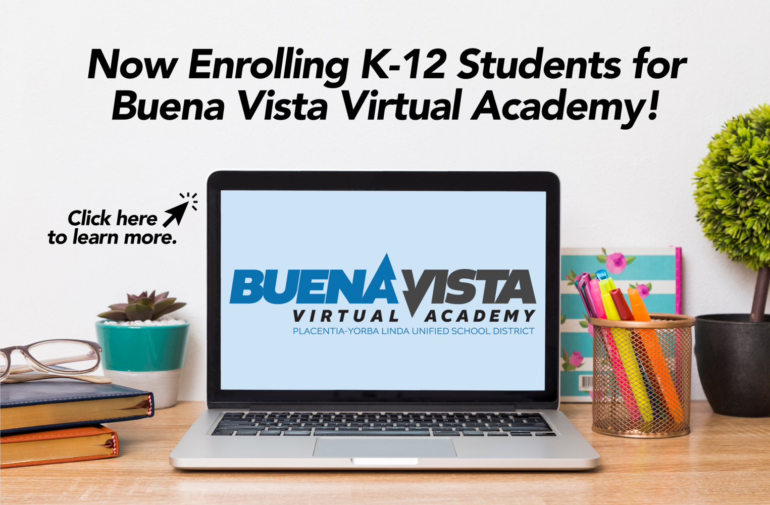 Buena Vista Virtual Academy.