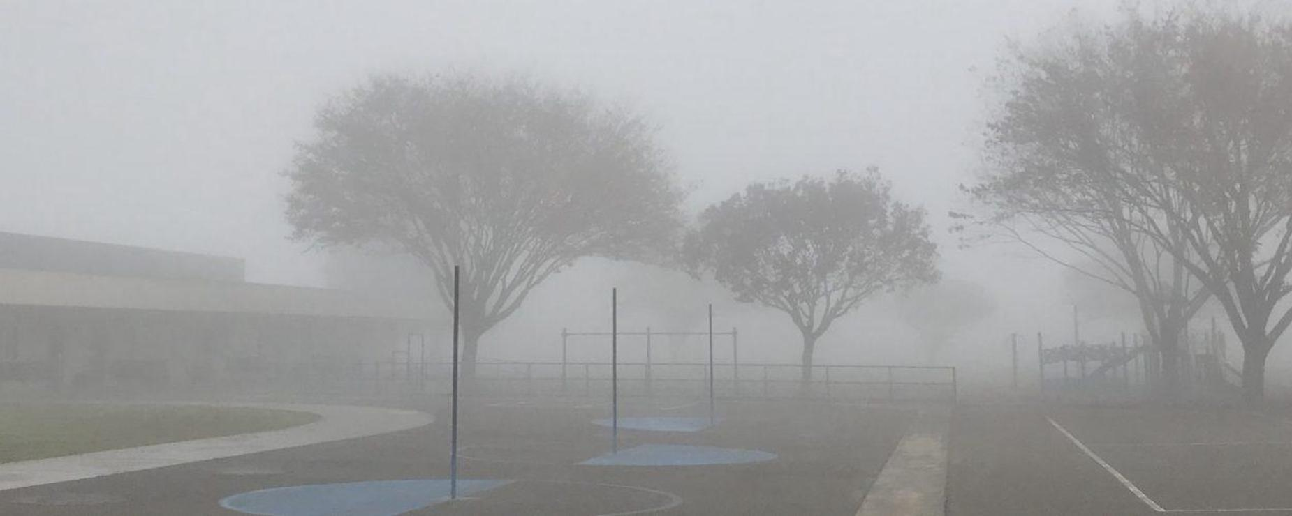 foggy school site