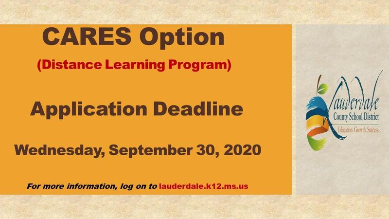 CARES (Distance Learning) OPTION APPLICATION