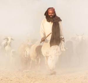 Walk through desert.png